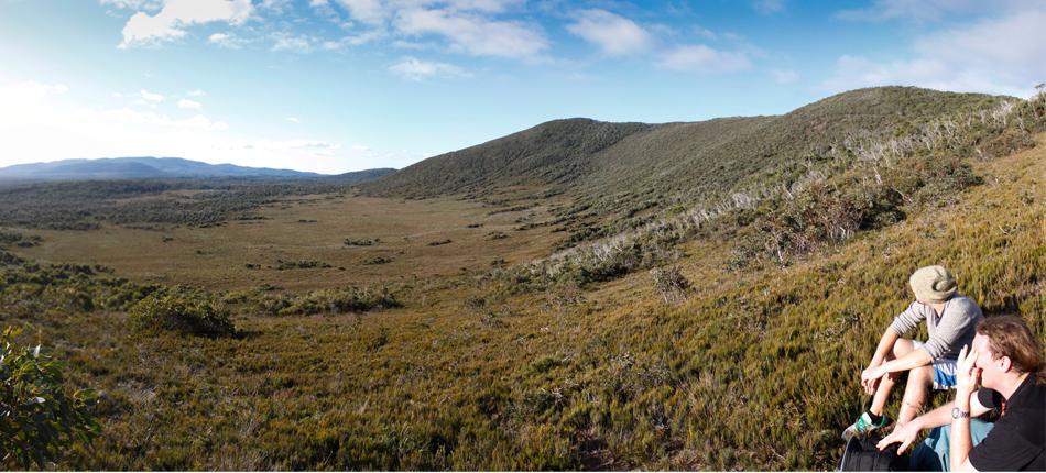 Arthurs Peak, Tasman National Park