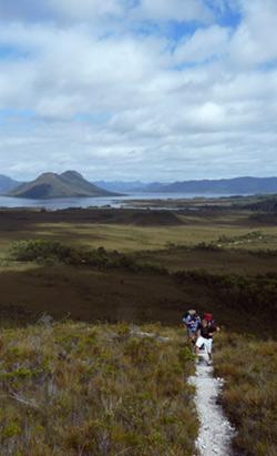 Mt-Eliza-Trail