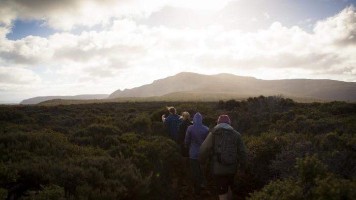 Cape Raoul plateau