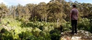 clarks Cliffs, Tasman Peninsula