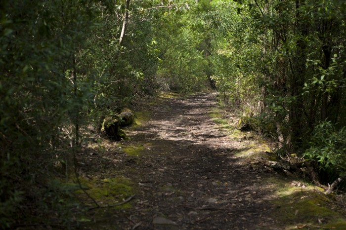 The Truganini Track