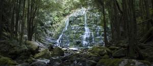 Nelson Falls