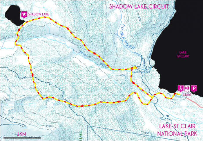 Shadow-Lake-Circuit