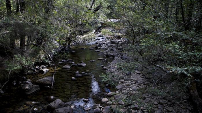 Cuvier River