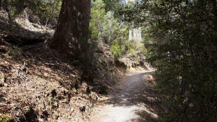 Platypus Bay trail