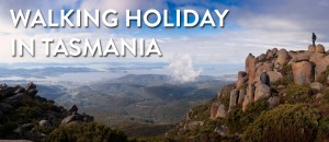 Walking Holidays in Tasmania