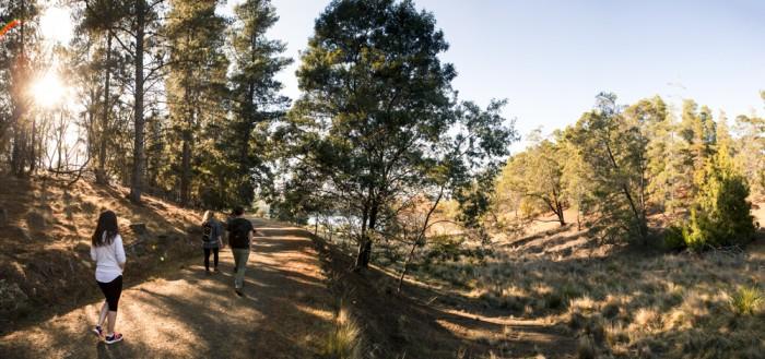 Risdon Brook Reservoir Trail
