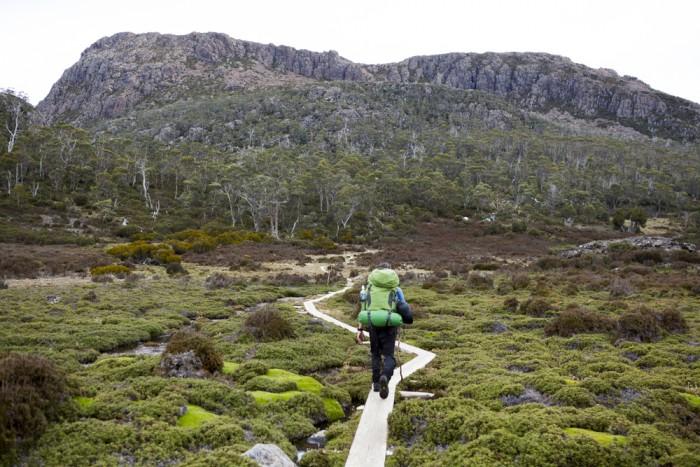 Walking towards Wild Dog Creek