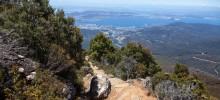 Zigzag Track, Mount Wellington (Kunanyi)