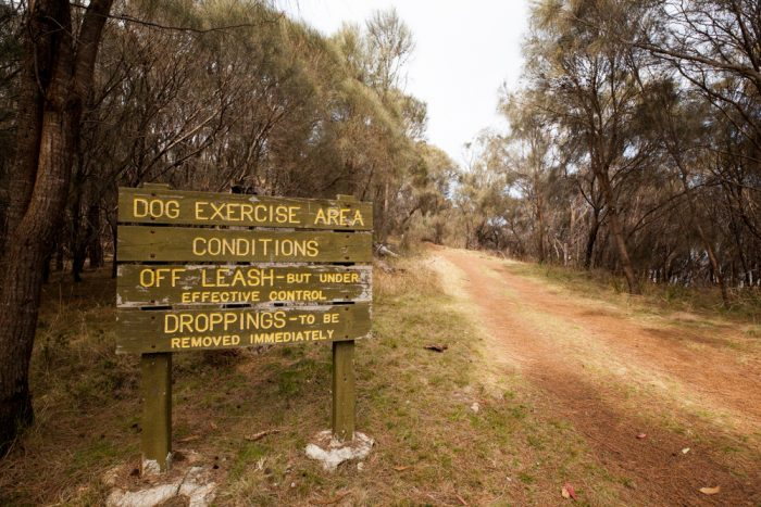 Dogs are allowed on Tinderbox Hills Track