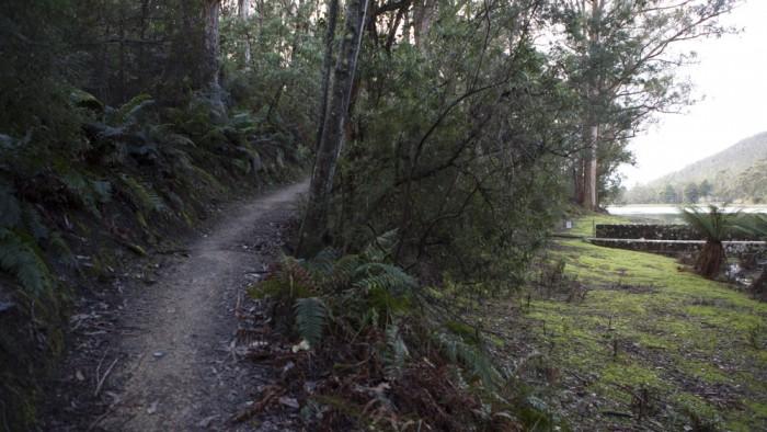 Waterworks Reserve trail