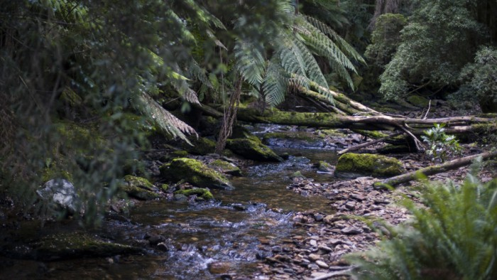 Nelson River