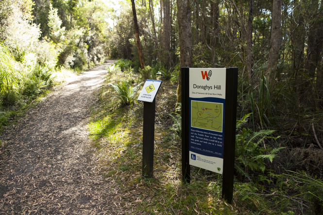Beginning of Donaghys Lookout Trail