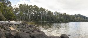 Platypus Bay