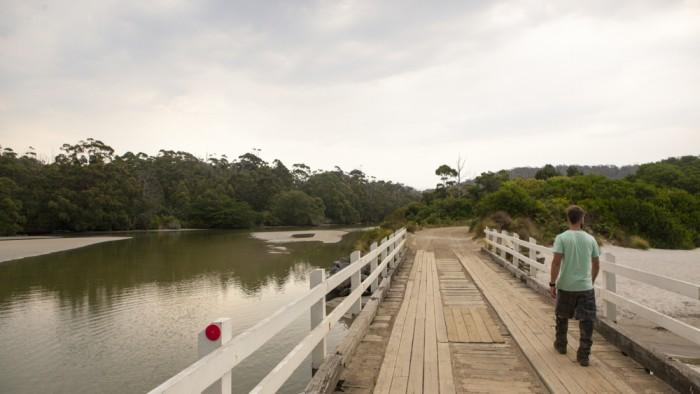 Cockle Creek