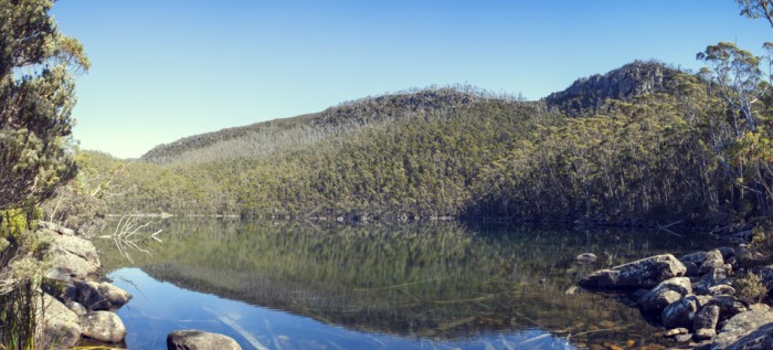 Lake Nichols, Mount Field East