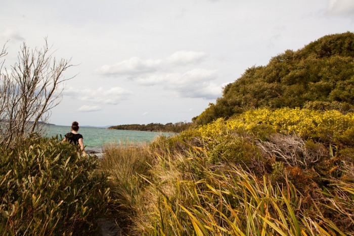 Fishers Point Track