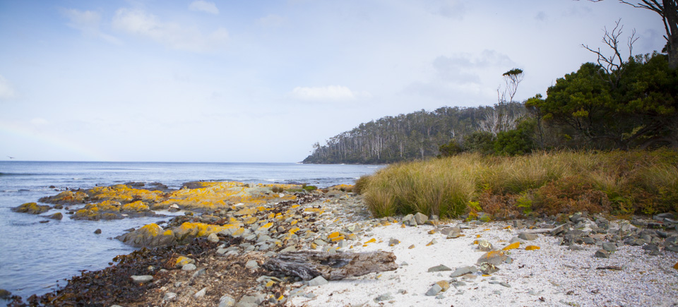 Fisher Point, South West National Park