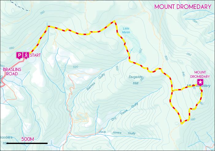Mount Dromedary Map