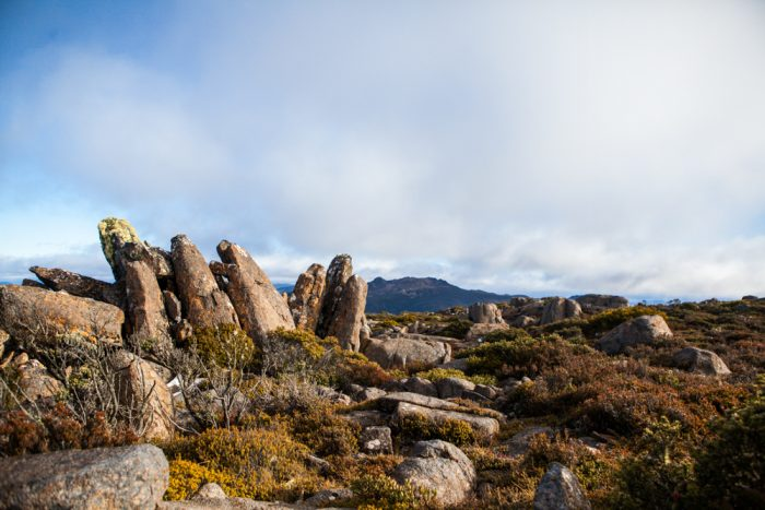 Thark Ridge, Mount Wellington