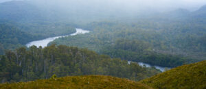 View of Pieman River from Mount Donaldson