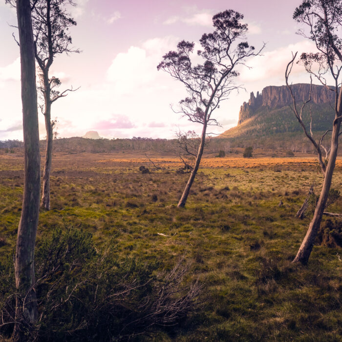View from New Pelion Hut, Overland Track