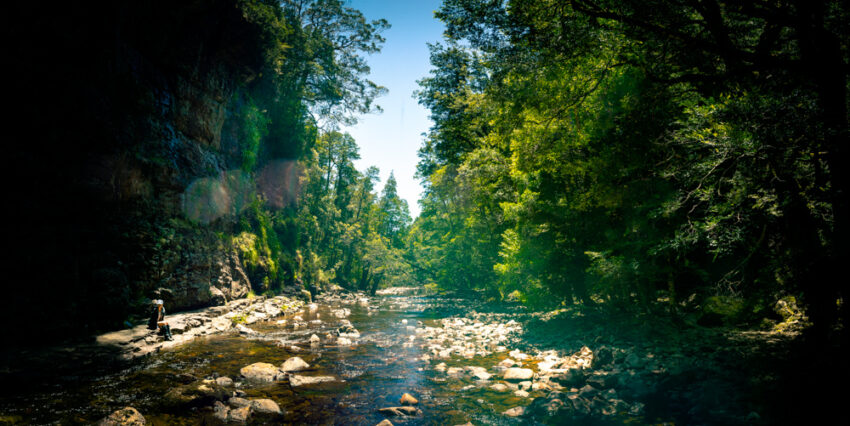 Hartnett Falls, Overland Track